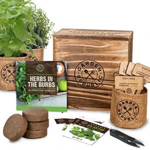 Indoor Herb Garden Starter Kit – Organic, Non GMO Herb Seeds – Basil Thyme Parsley Cilantro Seed, Potting Soil, Pots, Scissors – DIY Grow Kits for Growing Herbs Indoors, Kitchen, Balcony, Window Sill
